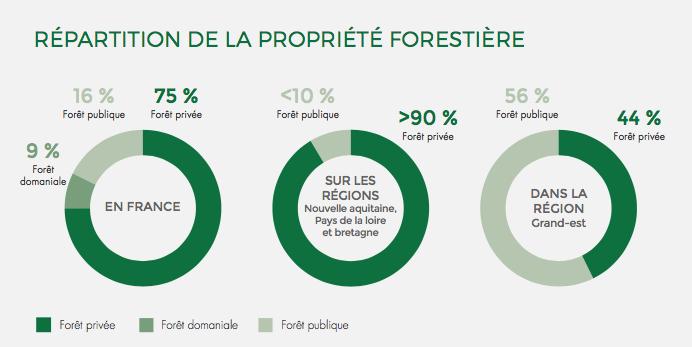 Répartition de la propriété forestière