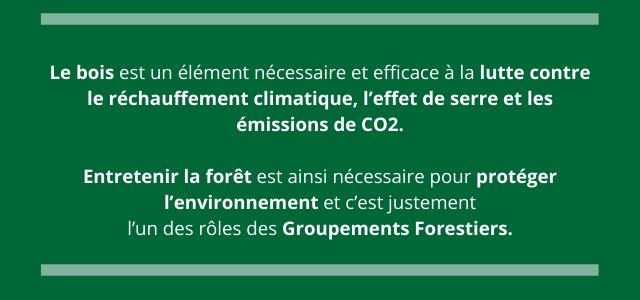 Le bois est un élément nécessaire et efficace à la lutte contre le réchauffement climatique, l'effet de serre et les émissions de CO2. Entretenir la forêt est ainsi nécessaire pour protéger l'environnement et c'est justement l'un des rôles des Groupements Forestiers.