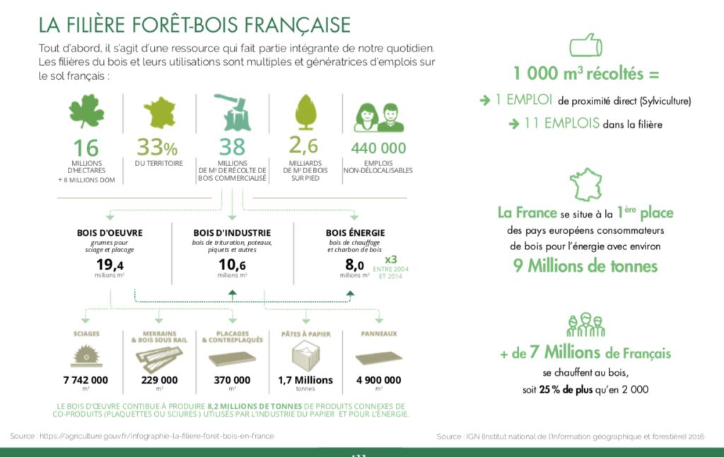 La filière forêt-bois en France