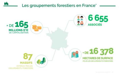 Les GF en France