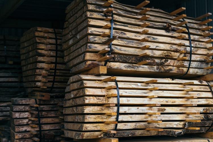 Participer à l'économie de la filière forêt-bois
